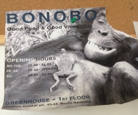 photo_redshark_bonobo_greenhouse